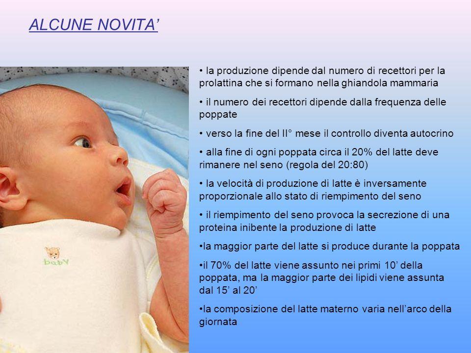 ALCUNE NOVITA' la produzione dipende dal numero di recettori per la prolattina che si formano nella ghiandola mammaria.