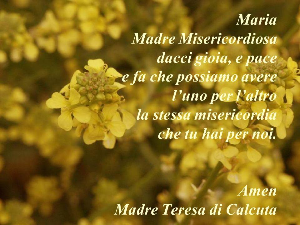 Maria Madre Misericordiosa dacci gioia, e pace e fa che possiamo avere l'uno per l'altro la stessa misericordia che tu hai per noi.