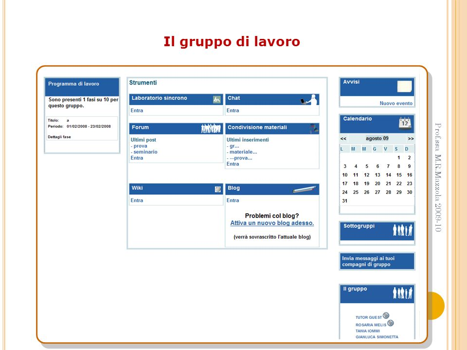 Il gruppo di lavoro Prof.ssa M.R.Mazzola 2009-10