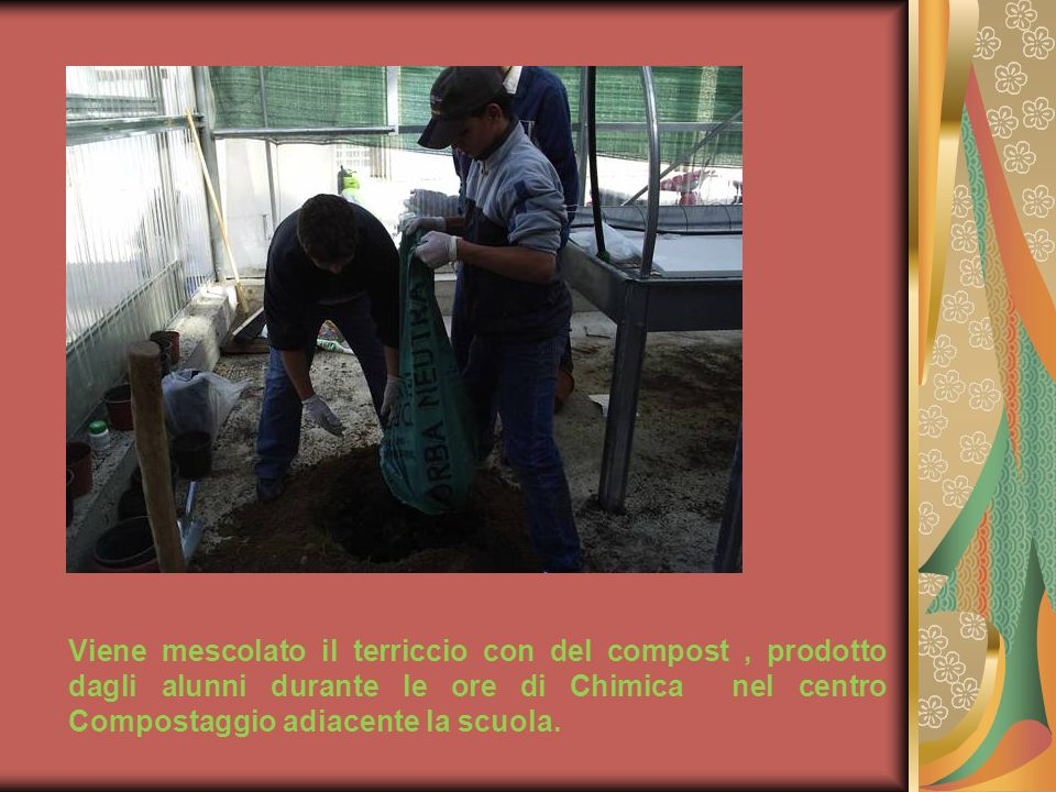 Viene mescolato il terriccio con del compost , prodotto dagli alunni durante le ore di Chimica nel centro Compostaggio adiacente la scuola.