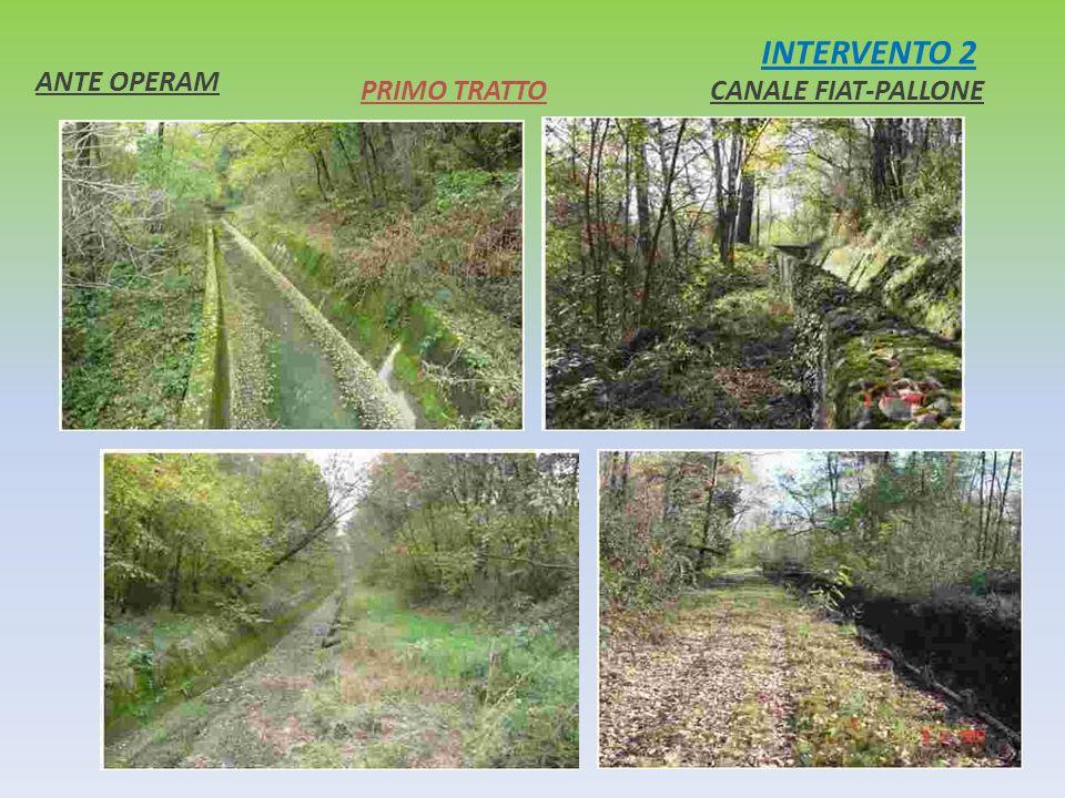 INTERVENTO 2 ANTE OPERAM PRIMO TRATTO CANALE FIAT-PALLONE