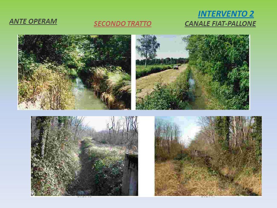 INTERVENTO 2 ANTE OPERAM SECONDO TRATTO CANALE FIAT-PALLONE