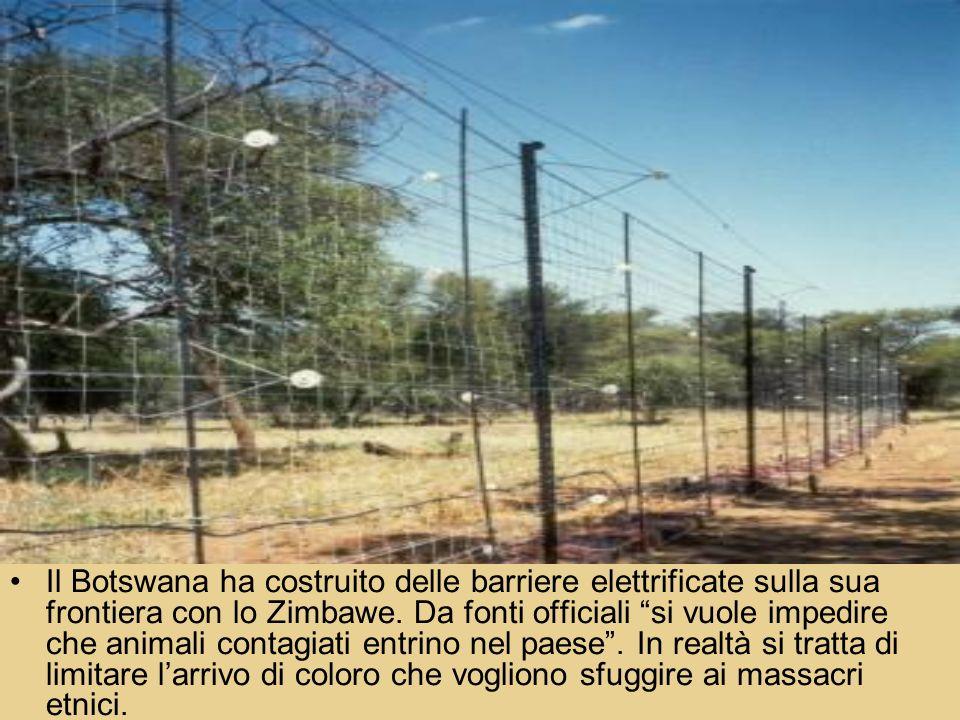 Il Botswana ha costruito delle barriere elettrificate sulla sua frontiera con lo Zimbawe.