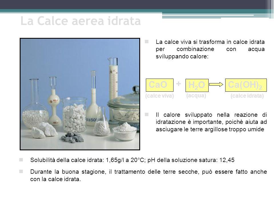La Calce aerea idrata + CaO H2O Ca(OH)2