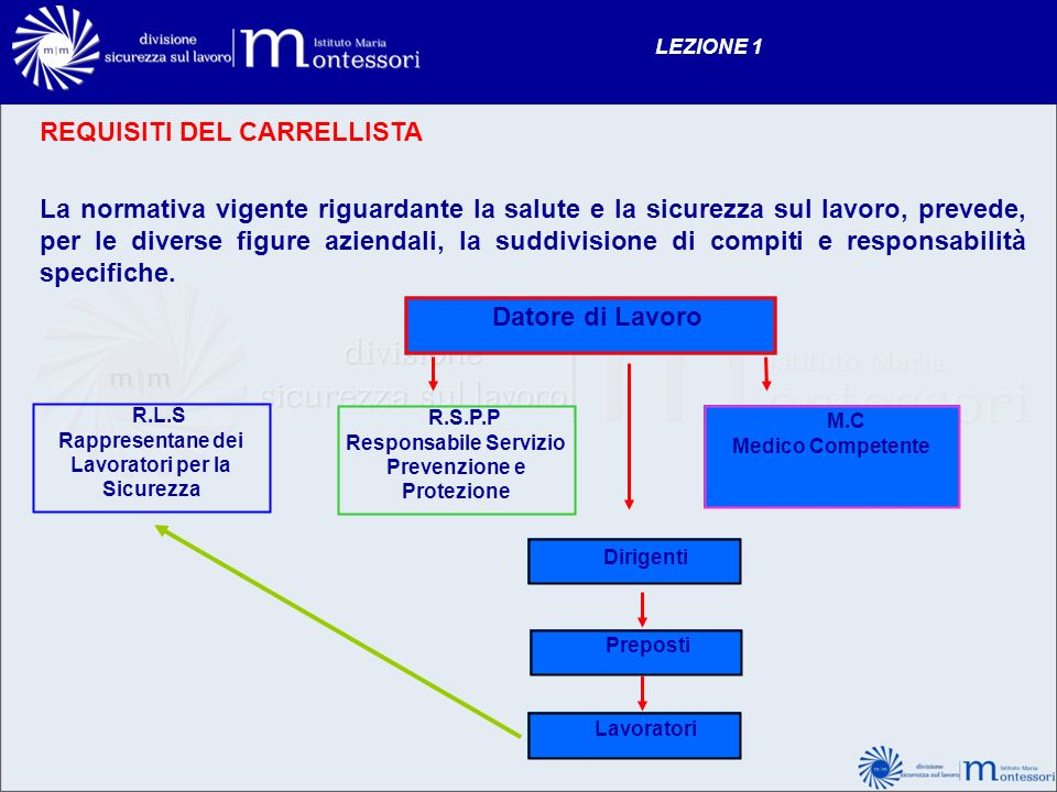 REQUISITI DEL CARRELLISTA