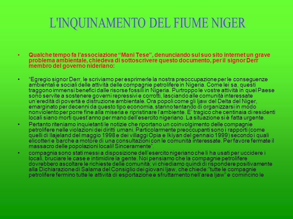 L INQUINAMENTO DEL FIUME NIGER