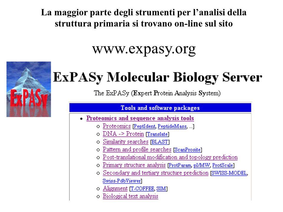 La maggior parte degli strumenti per l'analisi della struttura primaria si trovano on-line sul sito