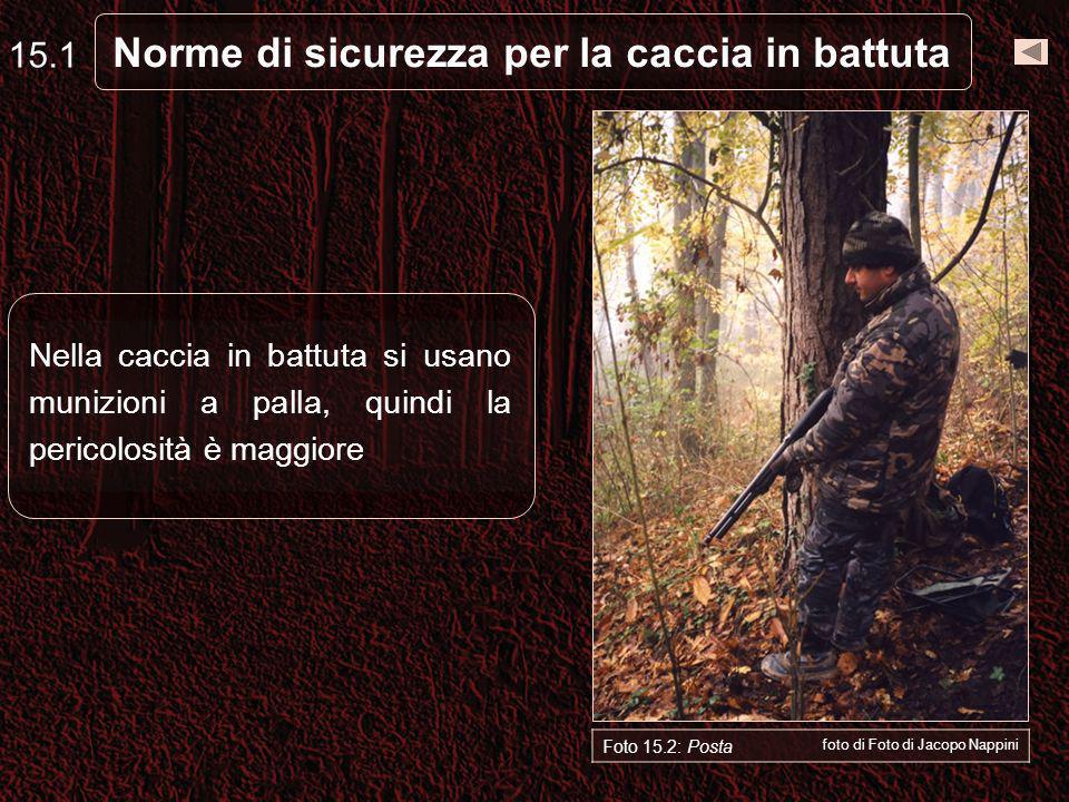 Norme di sicurezza per la caccia in battuta