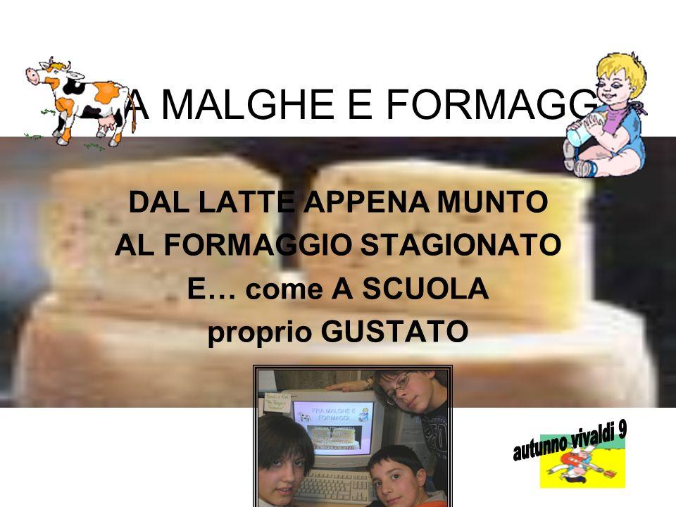 AL FORMAGGIO STAGIONATO