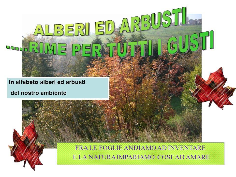 ALBERI ED ARBUSTI .....RIME PER TUTTI I GUSTI