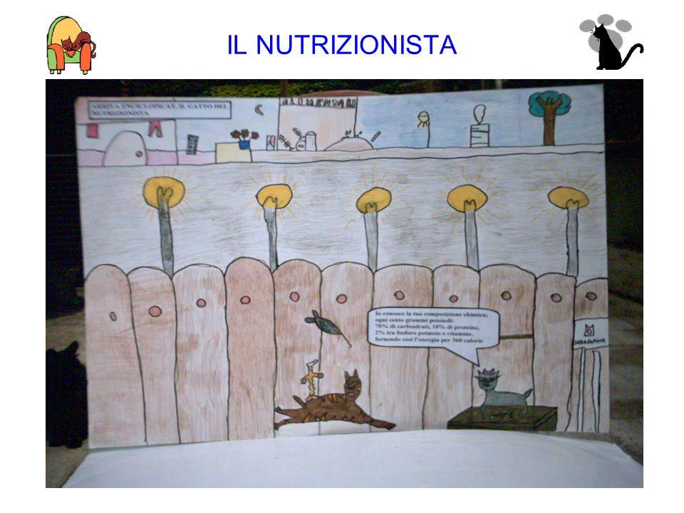 IL NUTRIZIONISTA