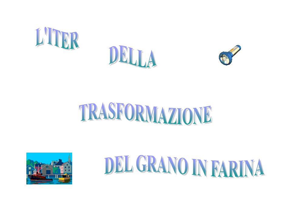 L ITER DELLA TRASFORMAZIONE DEL GRANO IN FARINA