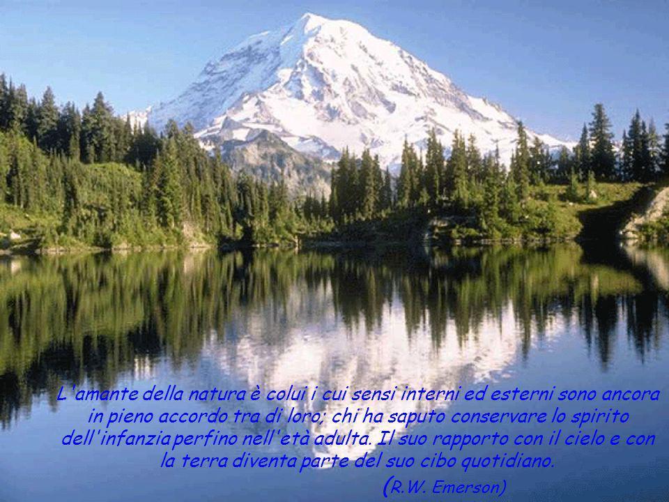 L amante della natura è colui i cui sensi interni ed esterni sono ancora in pieno accordo tra di loro; chi ha saputo conservare lo spirito dell infanzia perfino nell età adulta.