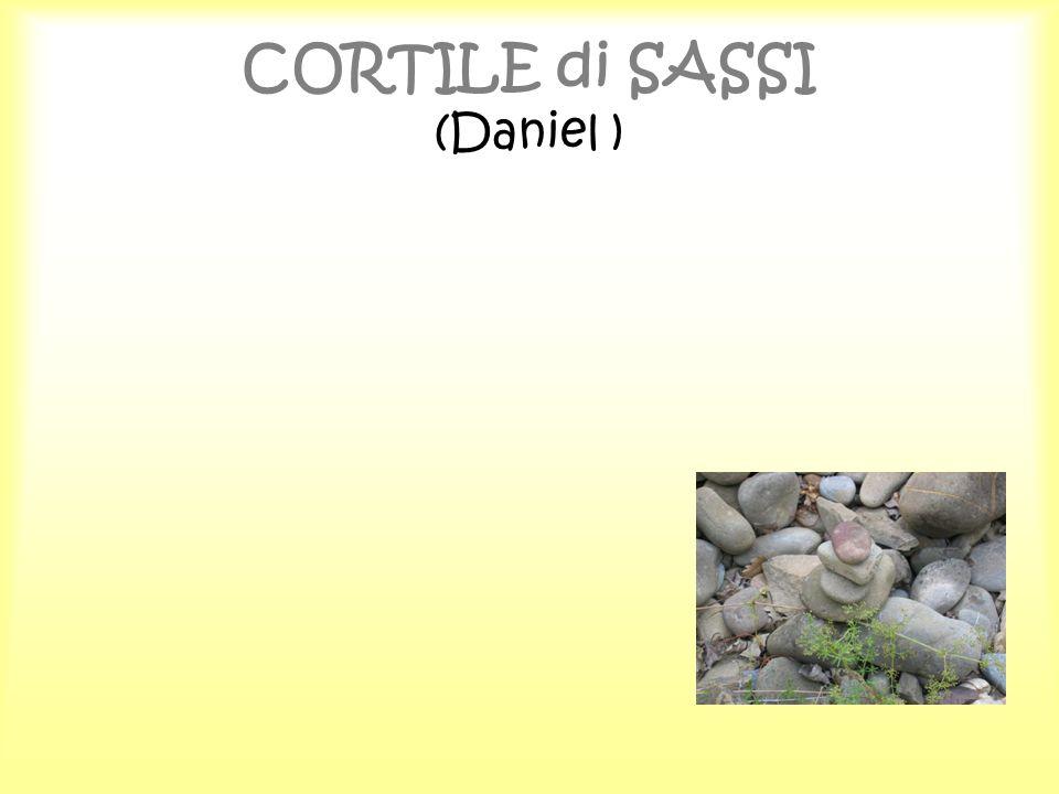 CORTILE di SASSI (Daniel )