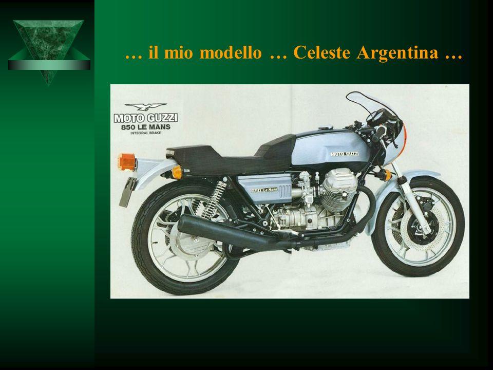 … il mio modello … Celeste Argentina …