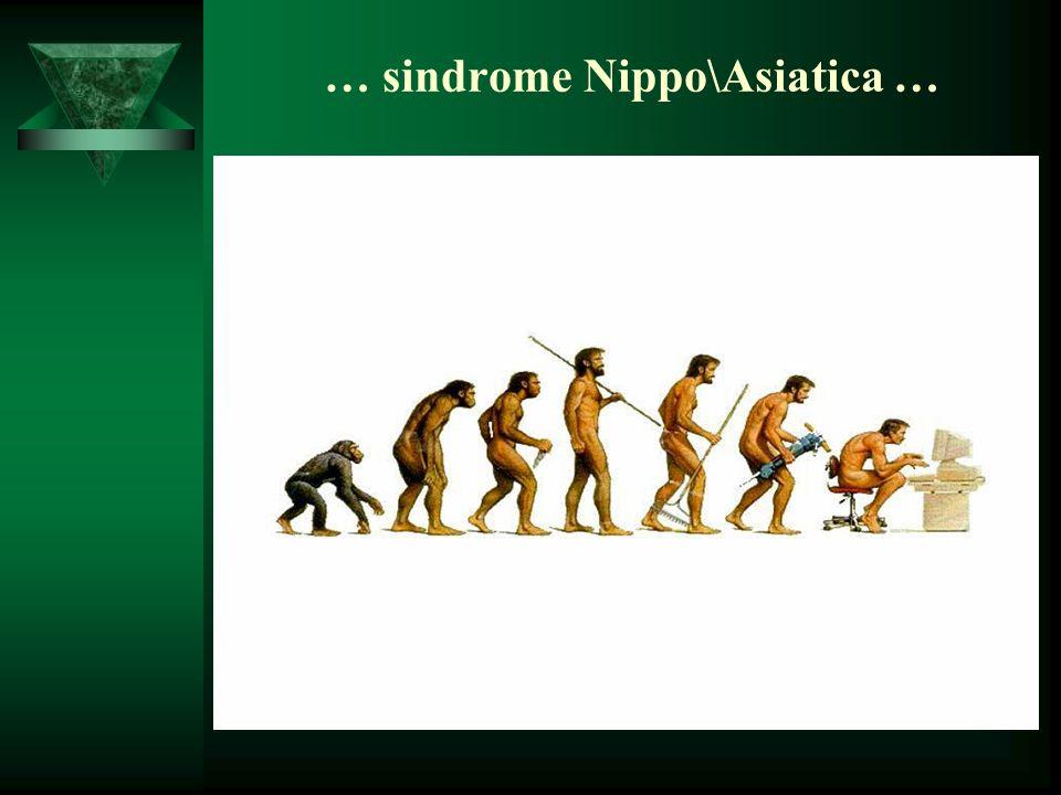 … sindrome Nippo\Asiatica …