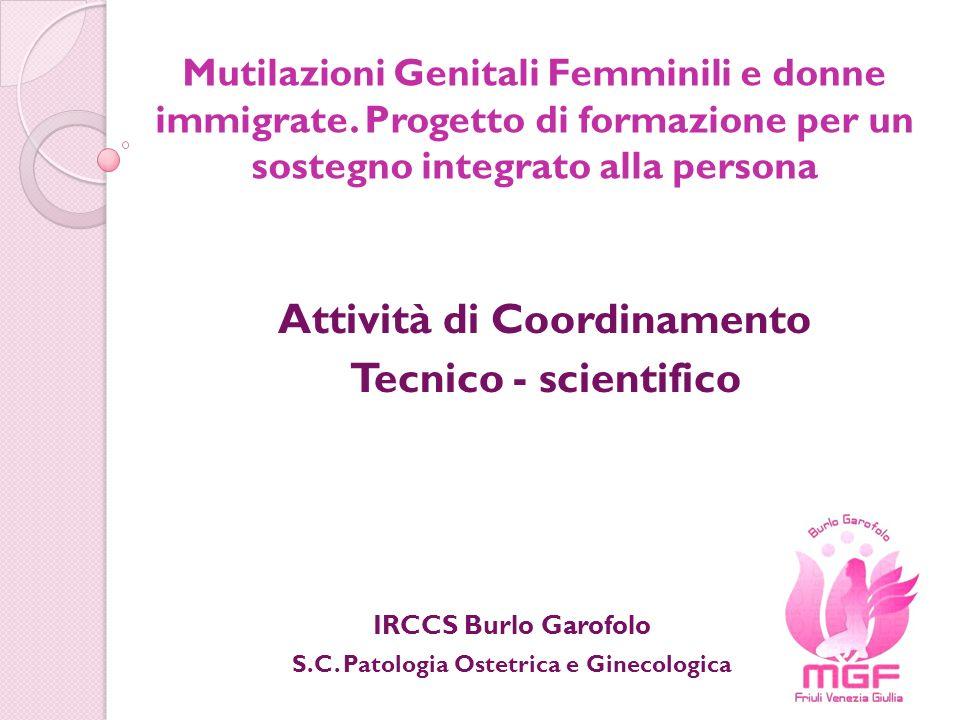 Attività di Coordinamento Tecnico - scientifico