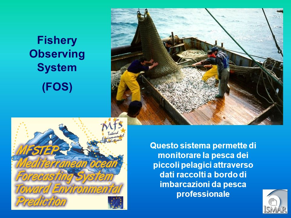 Fishery Observing System