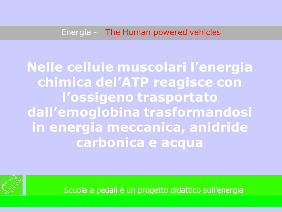 Energia - The Human powered vehicles