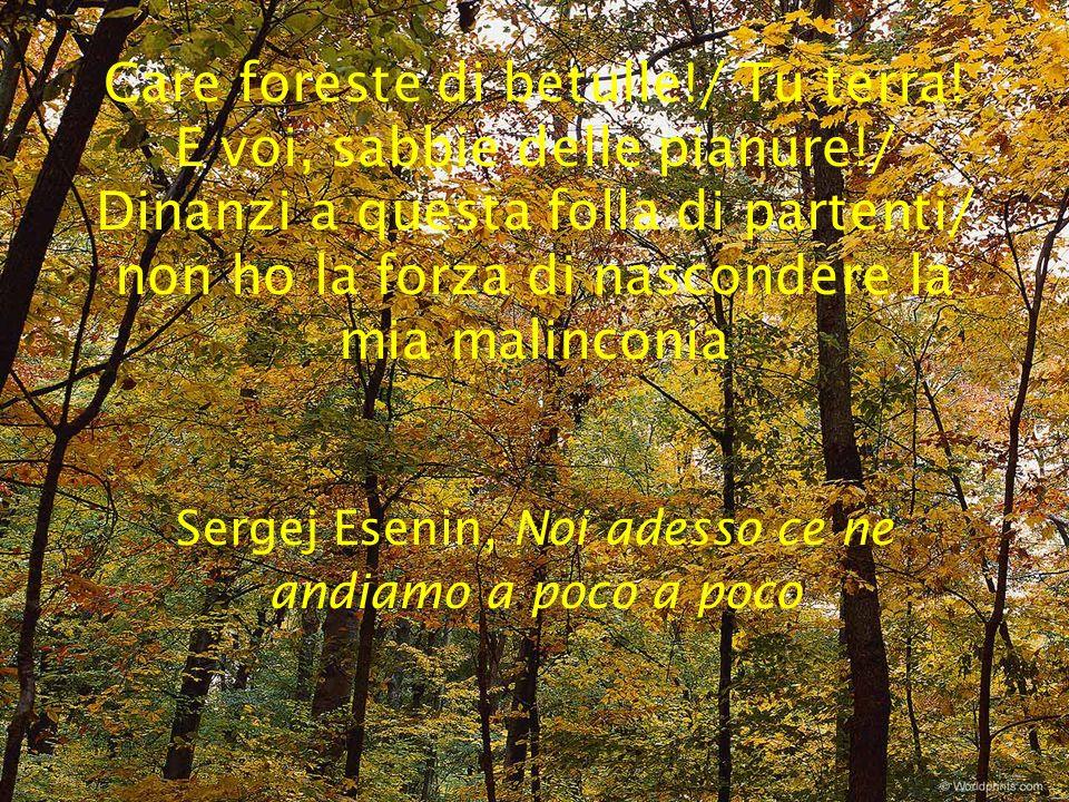 Care foreste di betulle. / Tu terra. E voi, sabbie delle pianure