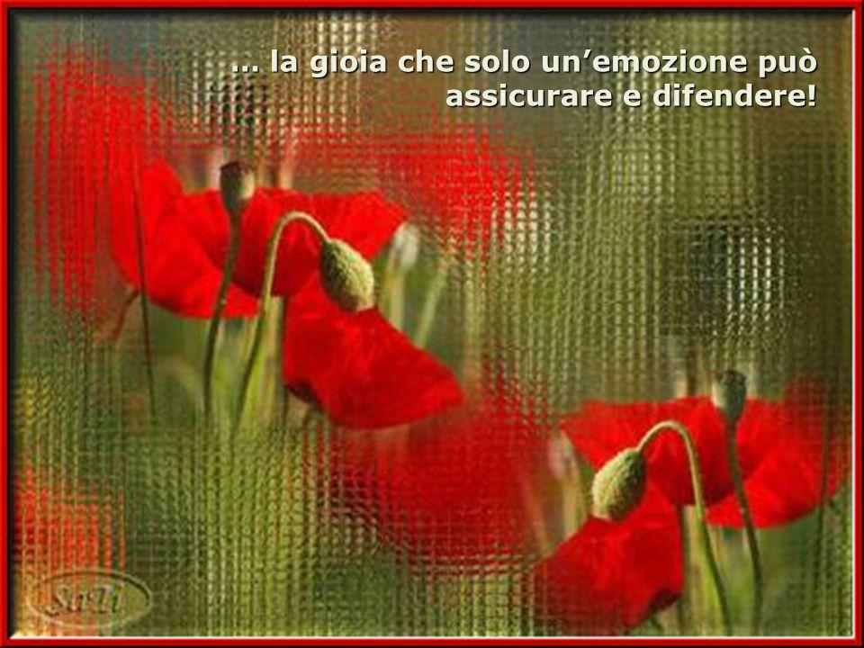 … la gioia che solo un'emozione può assicurare e difendere!