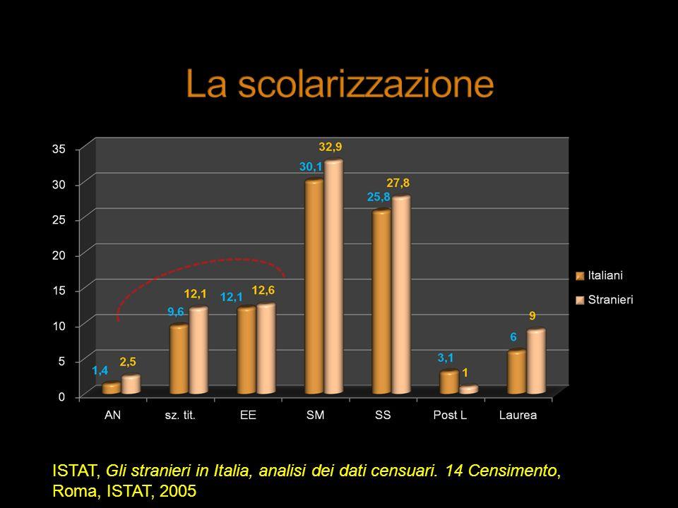 La scolarizzazione ISTAT, Gli stranieri in Italia, analisi dei dati censuari.