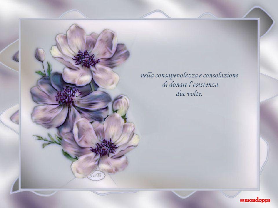 nella consapevolezza e consolazione
