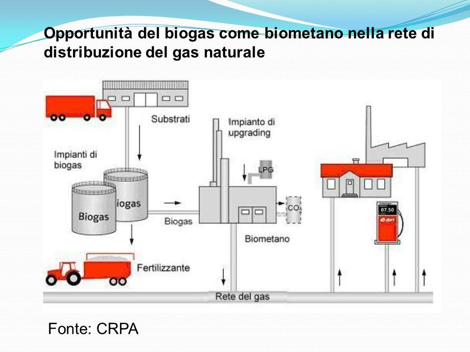 Opportunità del biogas come biometano nella rete di distribuzione del gas naturale