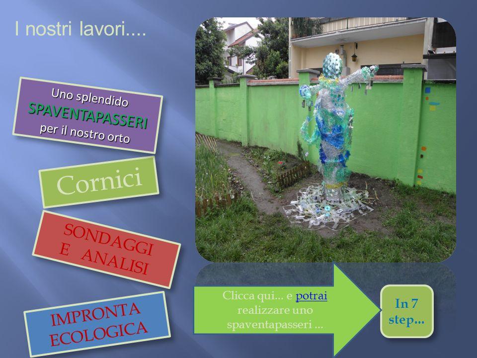 Cornici I nostri lavori.... Sondaggi e analisi Impronta ecologica