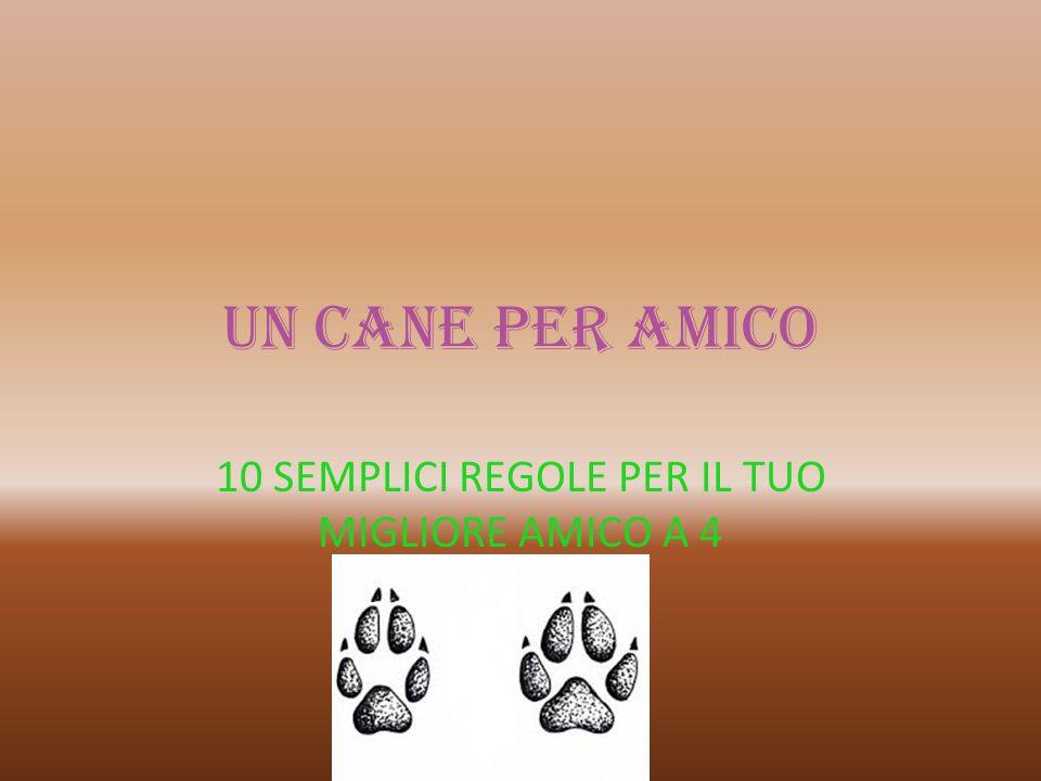 10 SEMPLICI REGOLE PER IL TUO MIGLIORE AMICO A 4