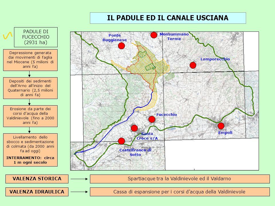 IL PADULE ED IL CANALE USCIANA INTERRAMENTO: circa 1 m ogni secolo