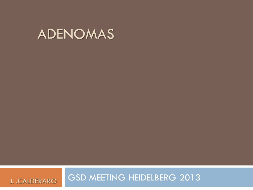 GSD MEETING HEIDELBERG 2013