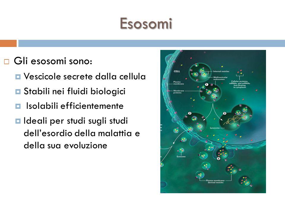 Esosomi Gli esosomi sono: Vescicole secrete dalla cellula