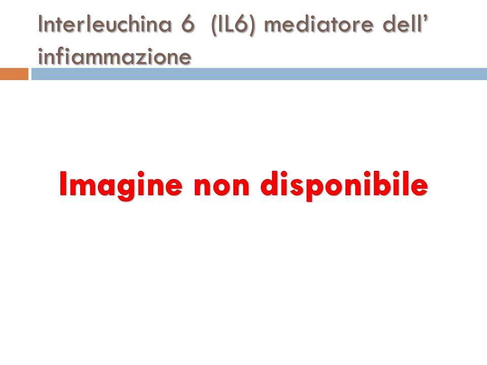 Interleuchina 6 (IL6) mediatore dell' infiammazione