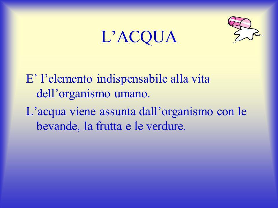 L'ACQUA E' l'elemento indispensabile alla vita dell'organismo umano.