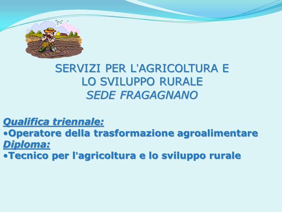 SERVIZI PER L'AGRICOLTURA E