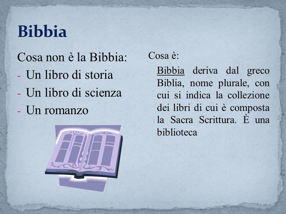 Bibbia Cosa non è la Bibbia: Un libro di storia Un libro di scienza