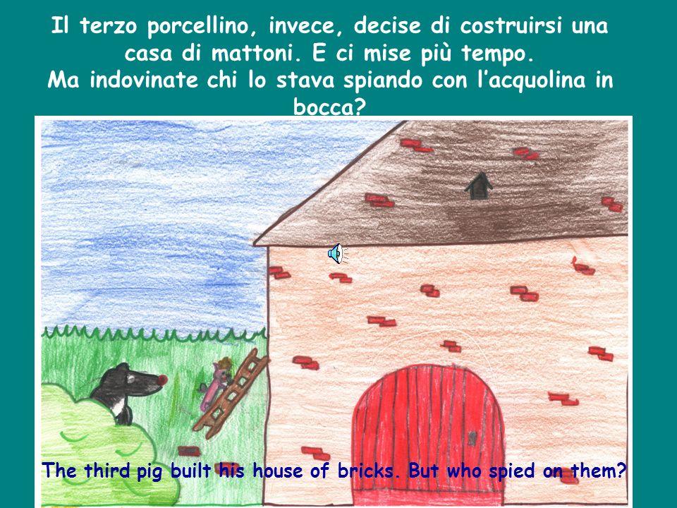 Il terzo porcellino, invece, decise di costruirsi una casa di mattoni