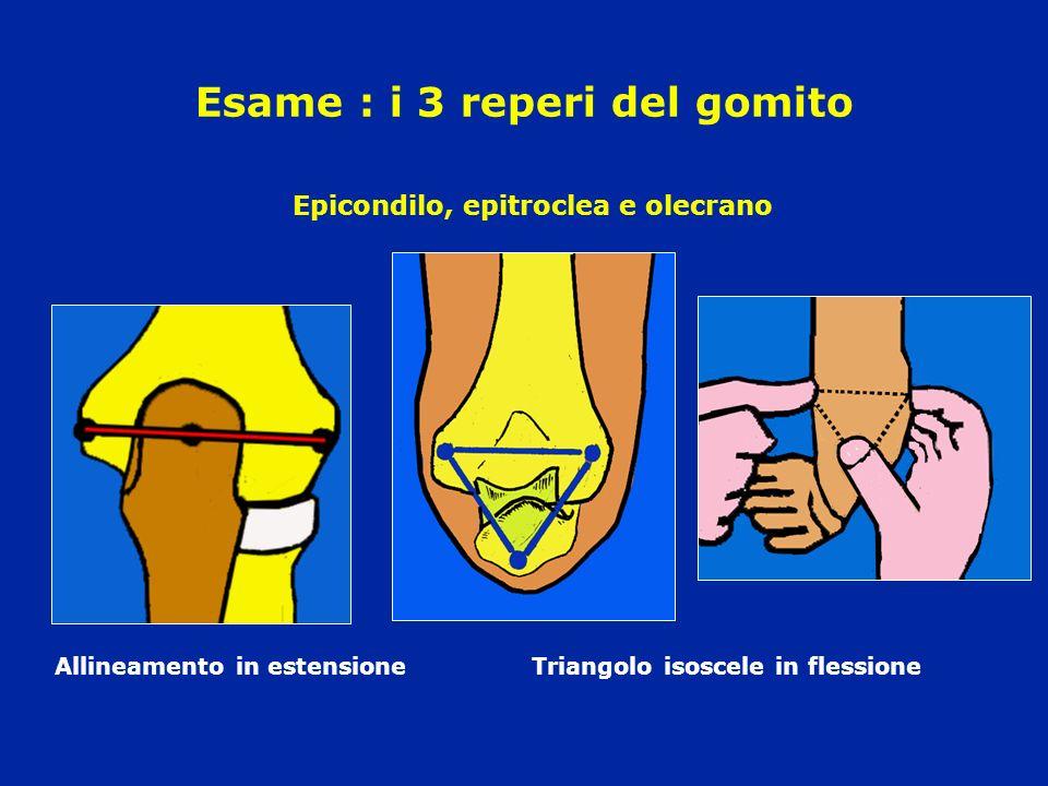 Esame : i 3 reperi del gomito