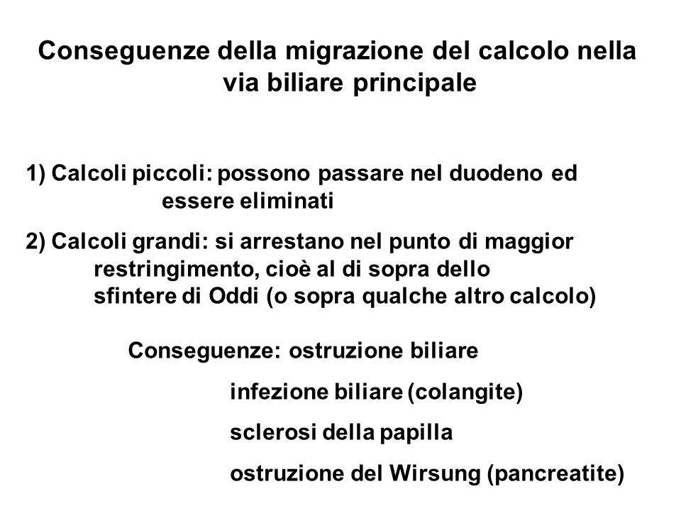 Conseguenze della migrazione del calcolo nella via biliare principale