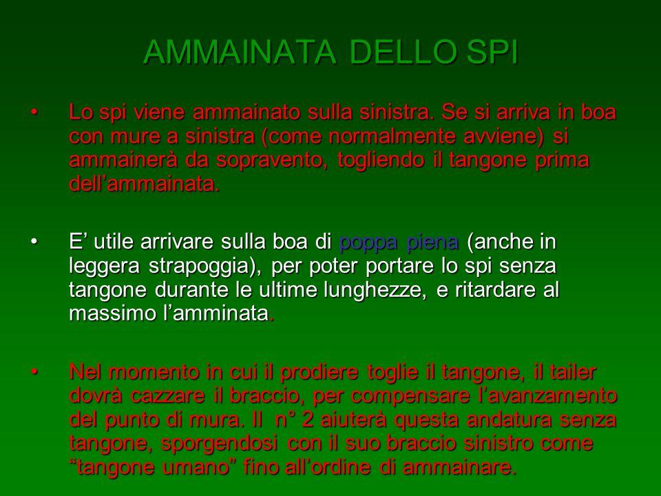 AMMAINATA DELLO SPI