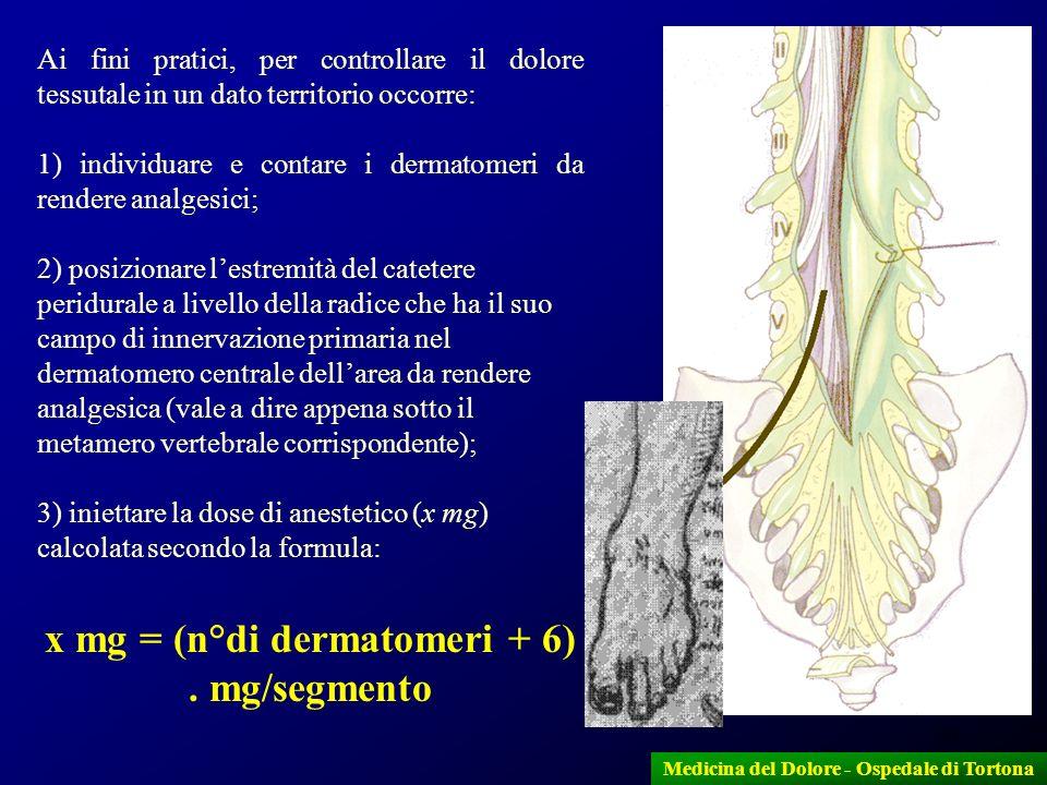 x mg = (n°di dermatomeri + 6) . mg/segmento