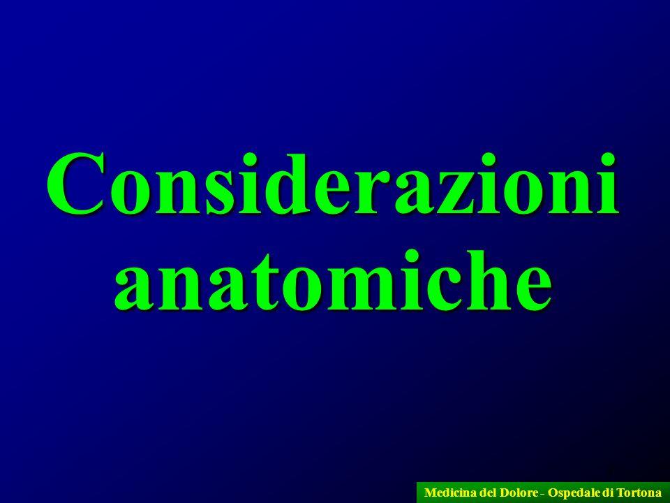 Considerazioni anatomiche Medicina del Dolore - Ospedale di Tortona