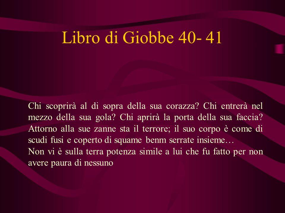 Libro di Giobbe 40- 41