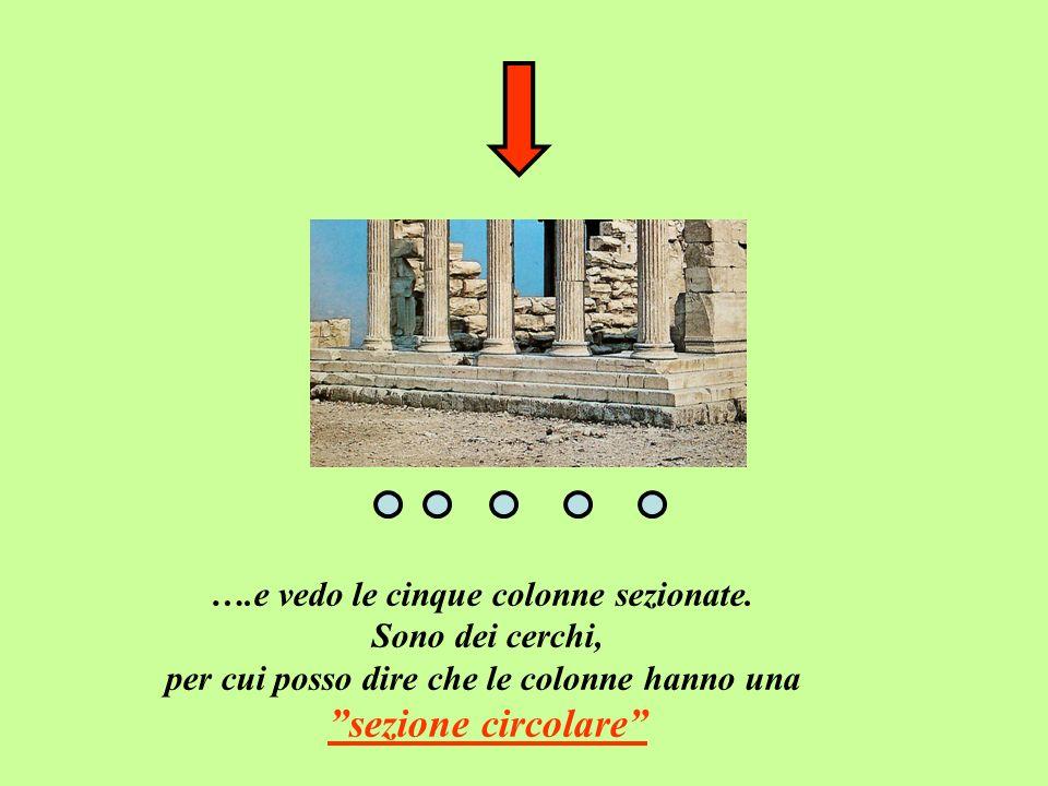sezione circolare ….e vedo le cinque colonne sezionate.