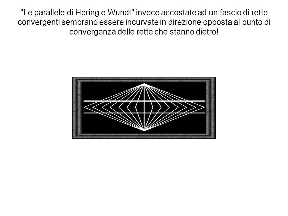 Le parallele di Hering e Wundt invece accostate ad un fascio di rette convergenti sembrano essere incurvate in direzione opposta al punto di convergenza delle rette che stanno dietro!