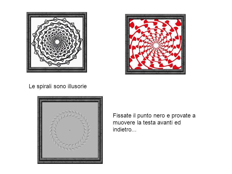 Le spirali sono illusorie.