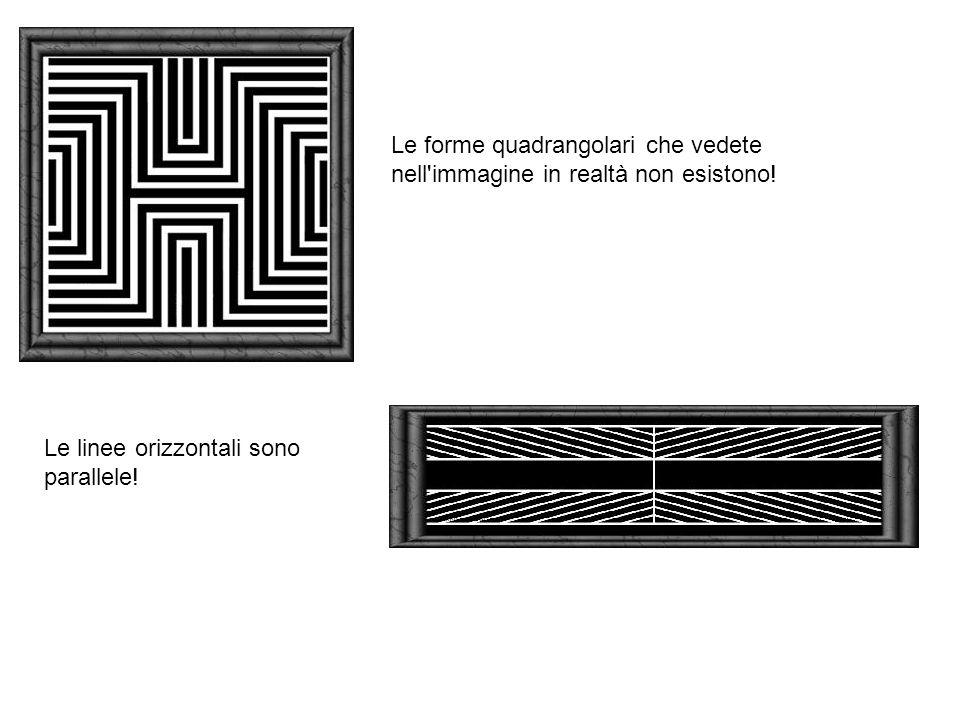 Le forme quadrangolari che vedete nell immagine in realtà non esistono!