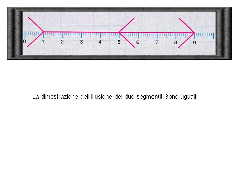 La dimostrazione dell illusione dei due segmenti! Sono uguali!