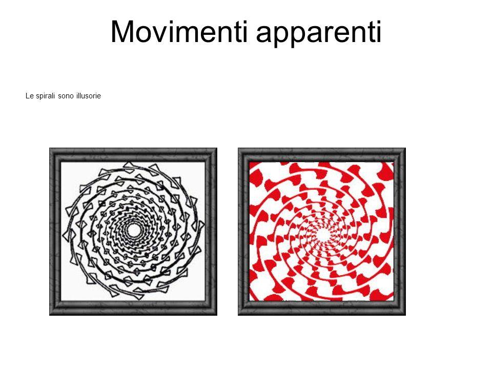 Movimenti apparenti Le spirali sono illusorie